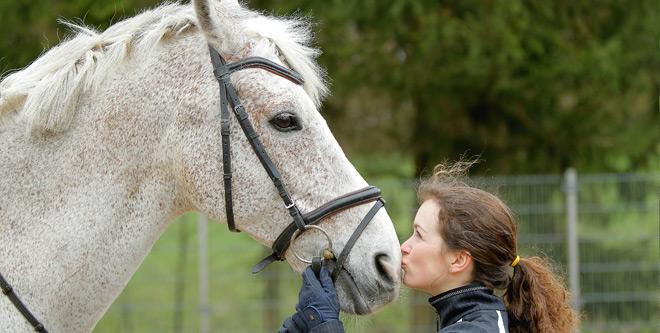 Warum Pferde den Menschen widerspiegeln
