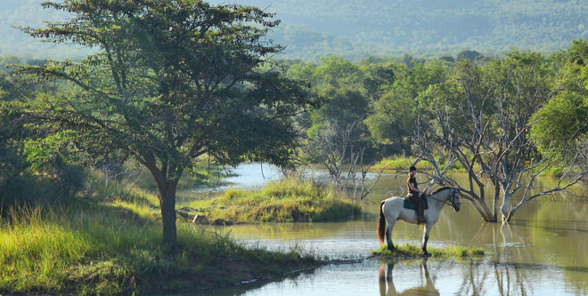 Reitsafari in Südafrika