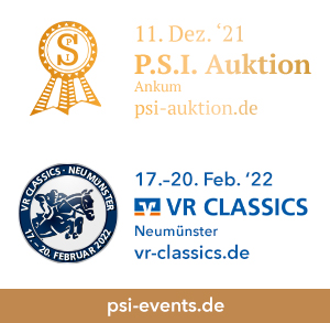 P.S.I. Auktion