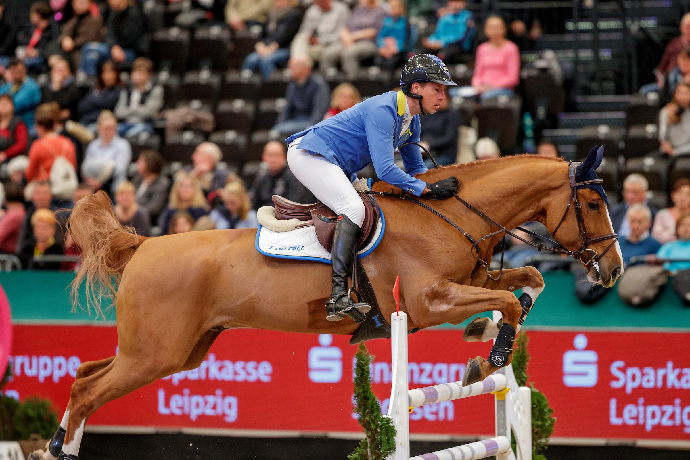 Positive Medikationskontrolle bei Ahlmanns Pferd Mandato