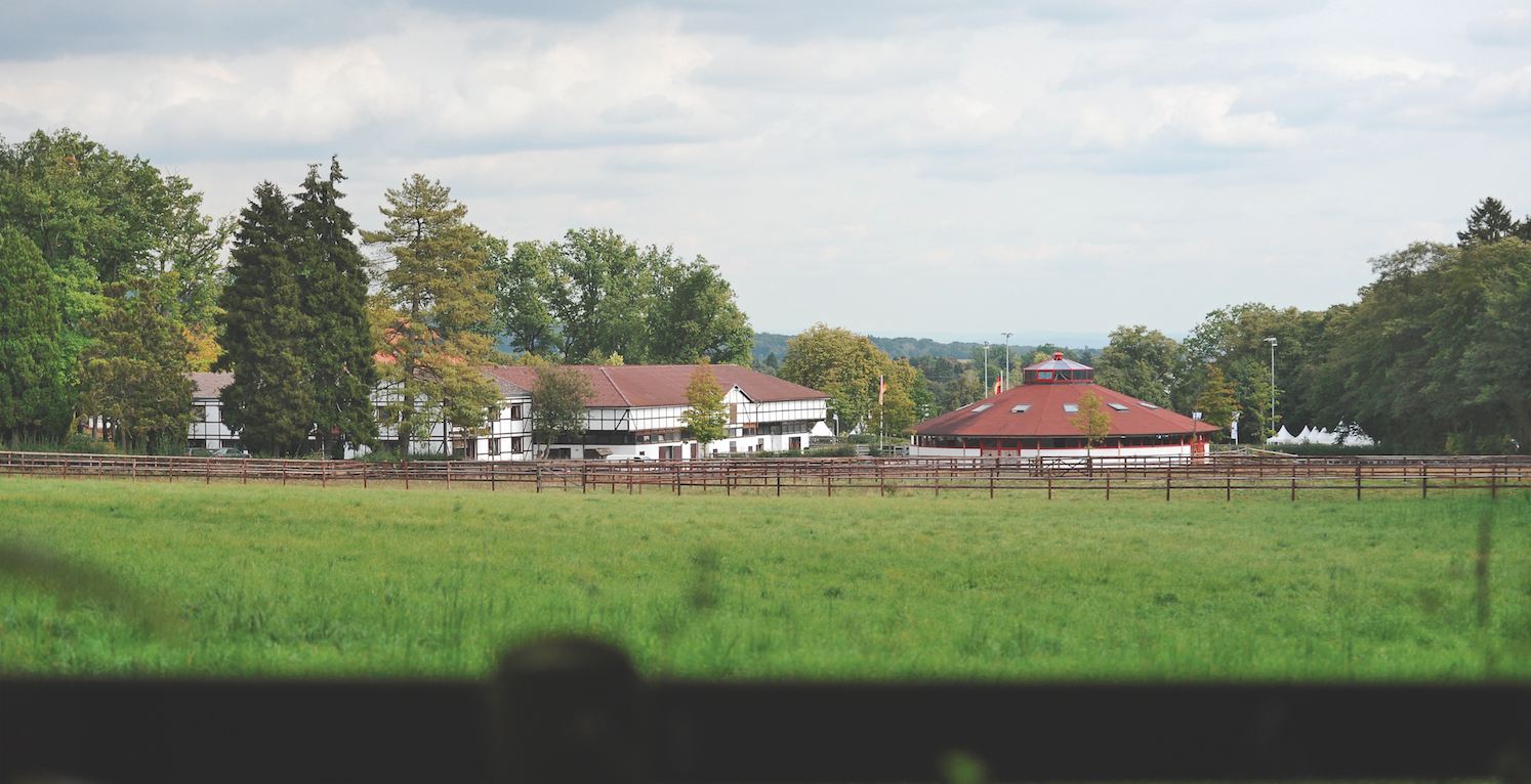 Mehrere Pferde tot: Feuer auf dem Erlenhof der Familie Rothenberger