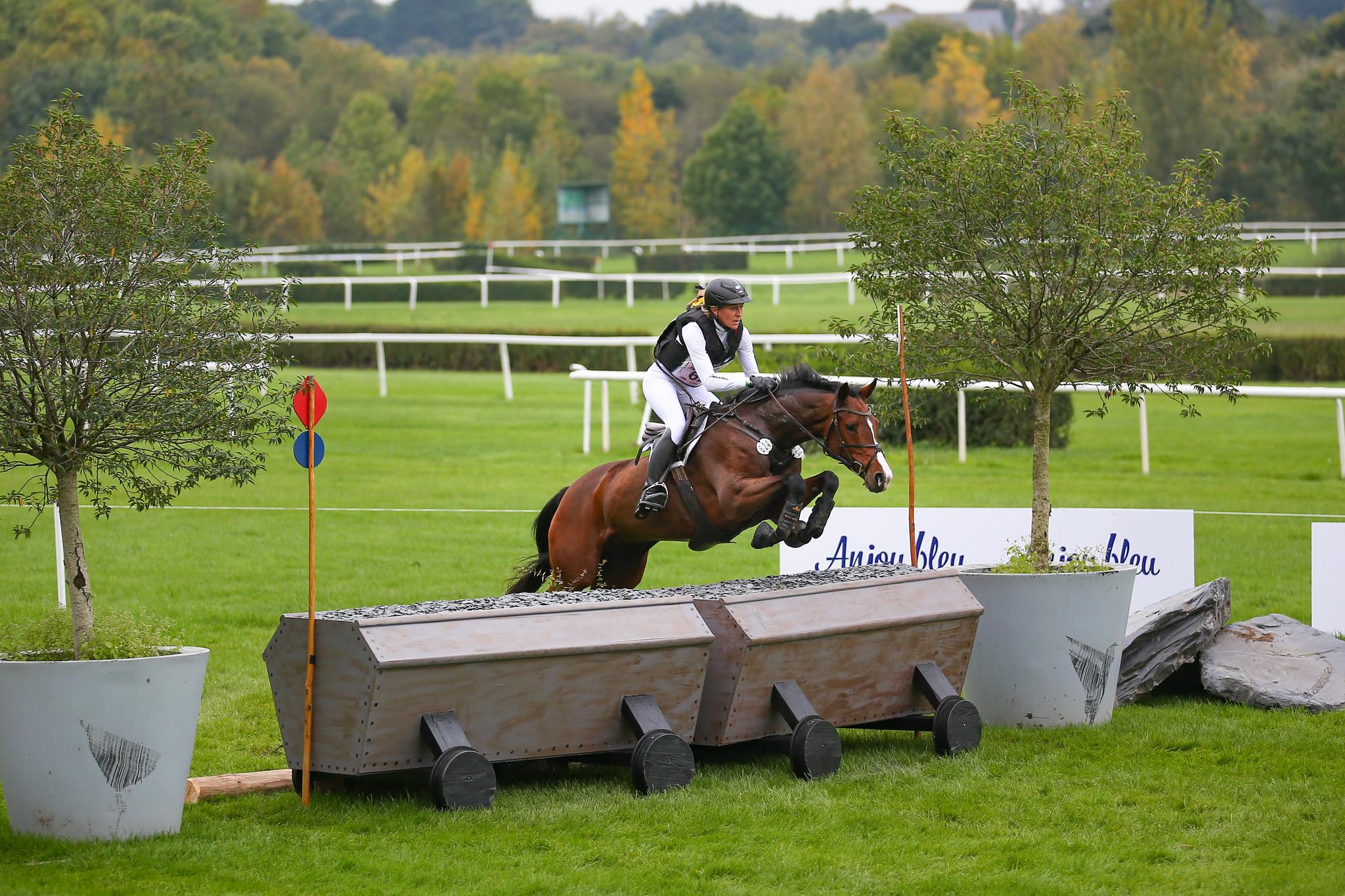 Le-Lion d'Angers: Doppelgold für deutsche Pferde