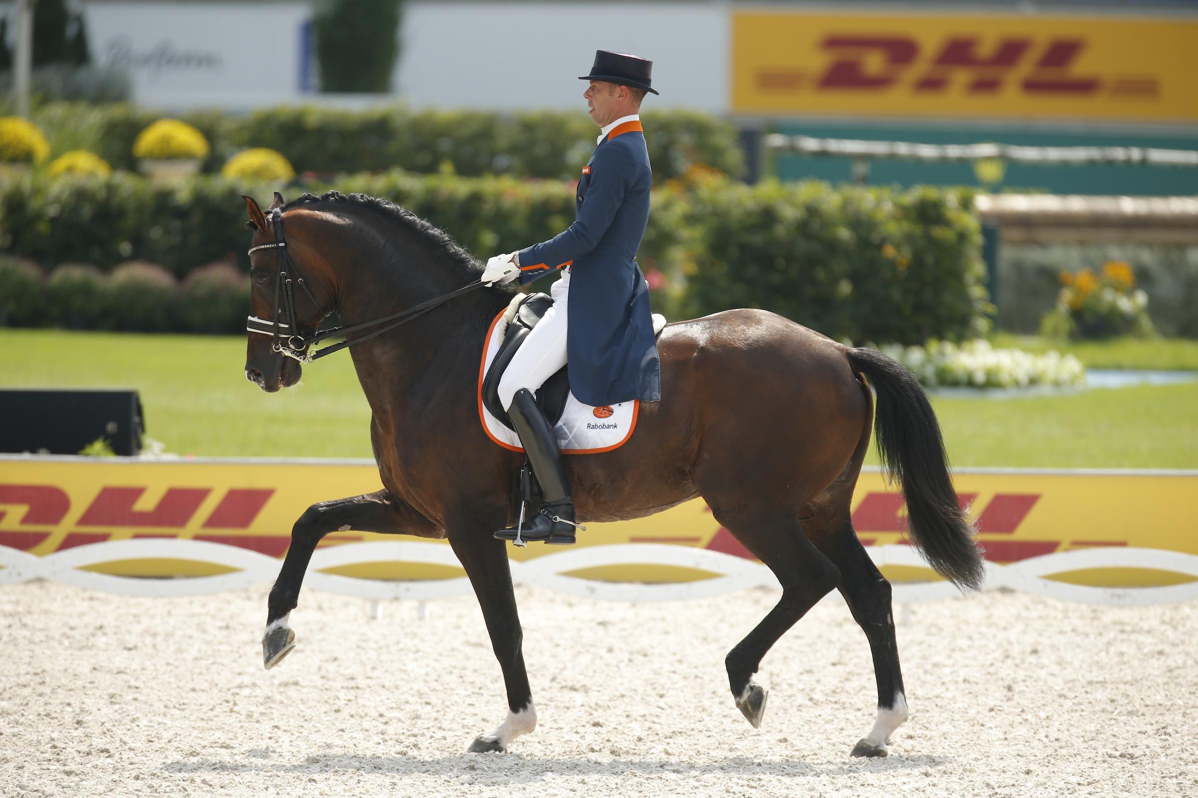 Johnson ist Pferd des Jahres 2019 in den Niederlanden