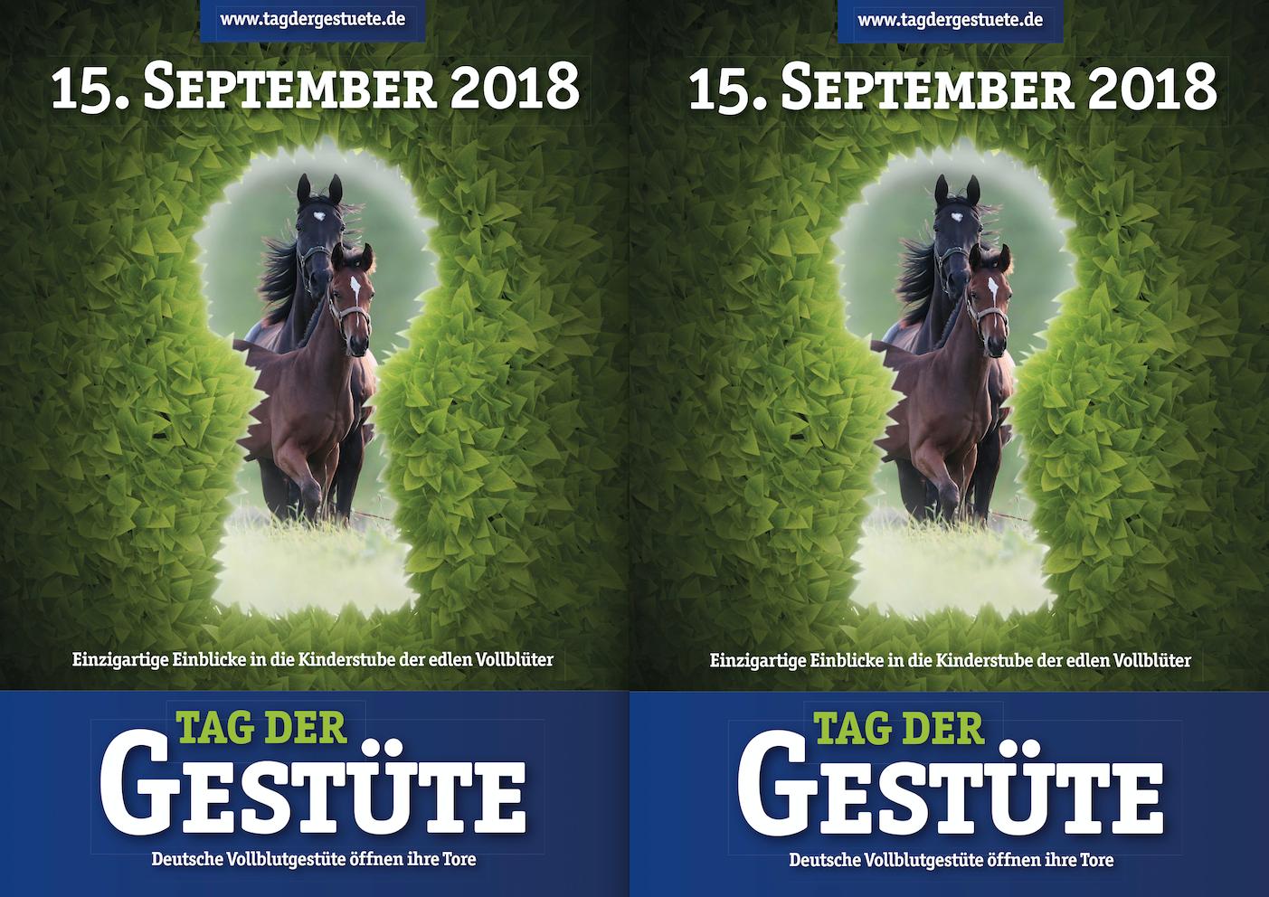 15. September: Zu Gast bei edlen Vollblütern